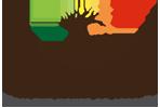 Wind Song Logo